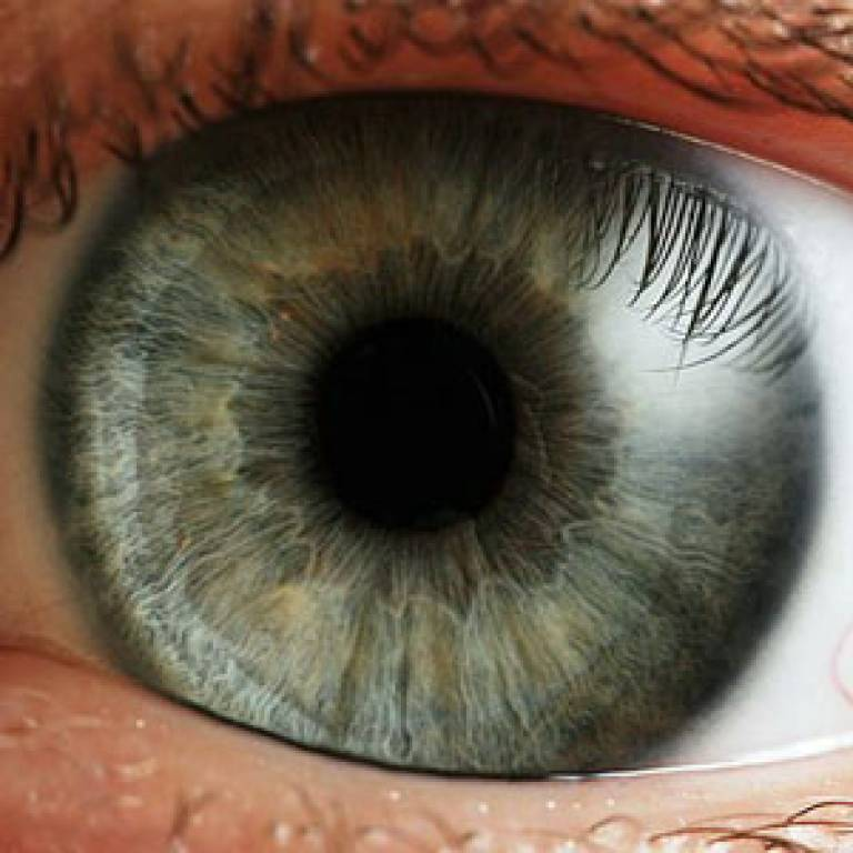 New Innovation Could Mean Eye Injections Are A Thing Of The Past Ucl News Ucl University College London
