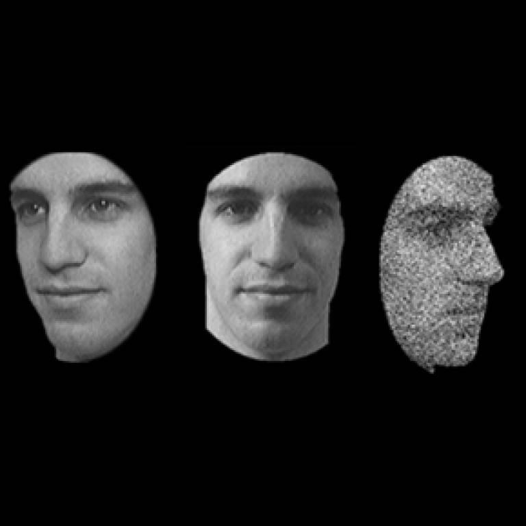 Cambridge Face Memory Test