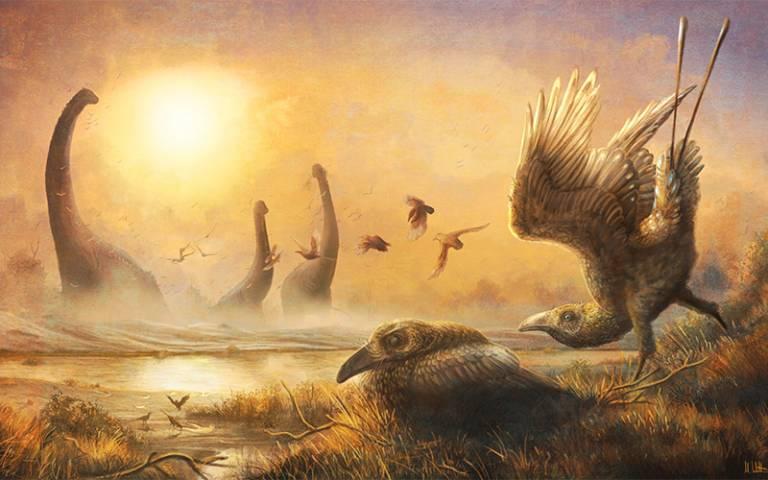 Illustration of ancient bird Falcatakely