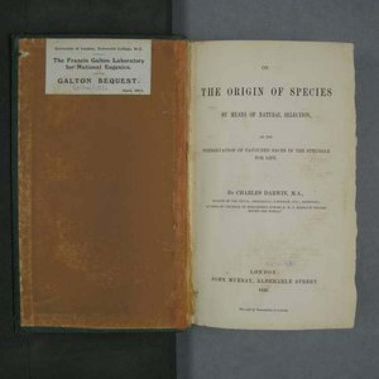 Galton archive now online