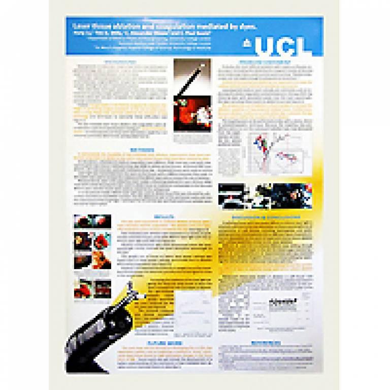 UCL Graduate School Poster exhibition
