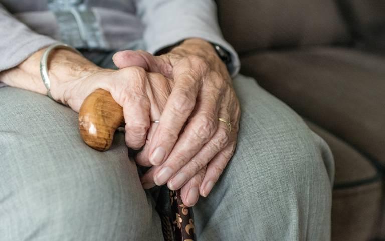 hand of an elderly woman holding a walking stick