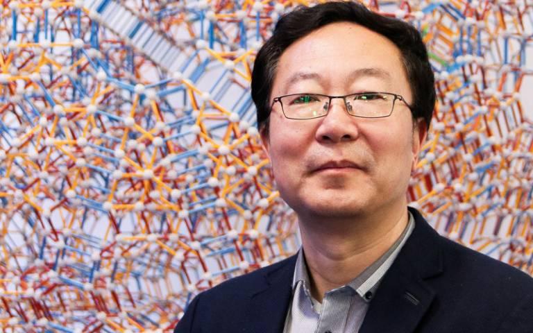 Professor Li Wei