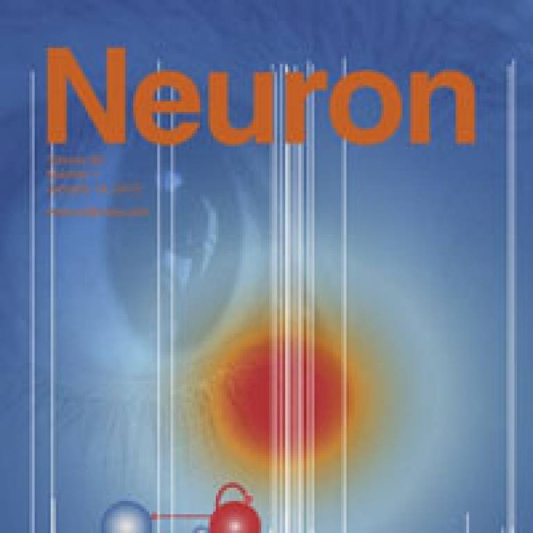Cover of 'Neuron' journal