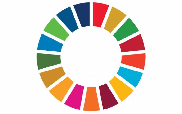 "The UN Sustainable Development Goals ""SDG Wheel"""