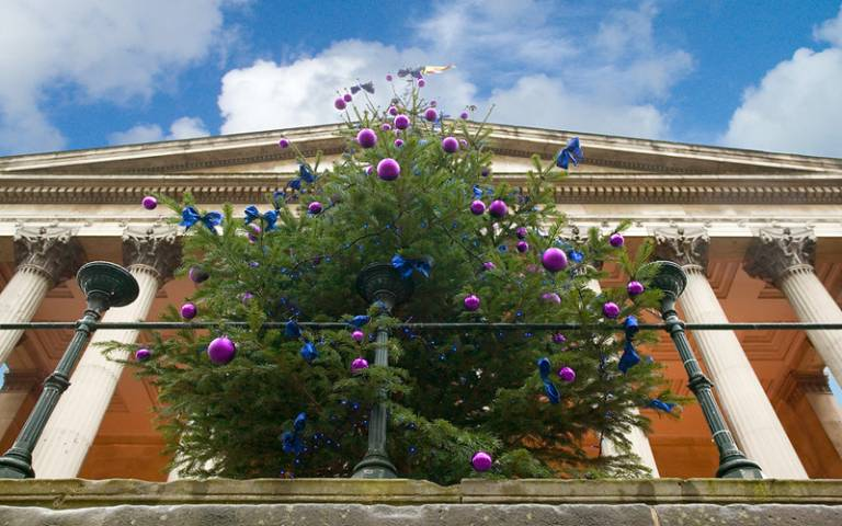 UCL Christmas tree on the Portico, with pink and blue decorations and lights