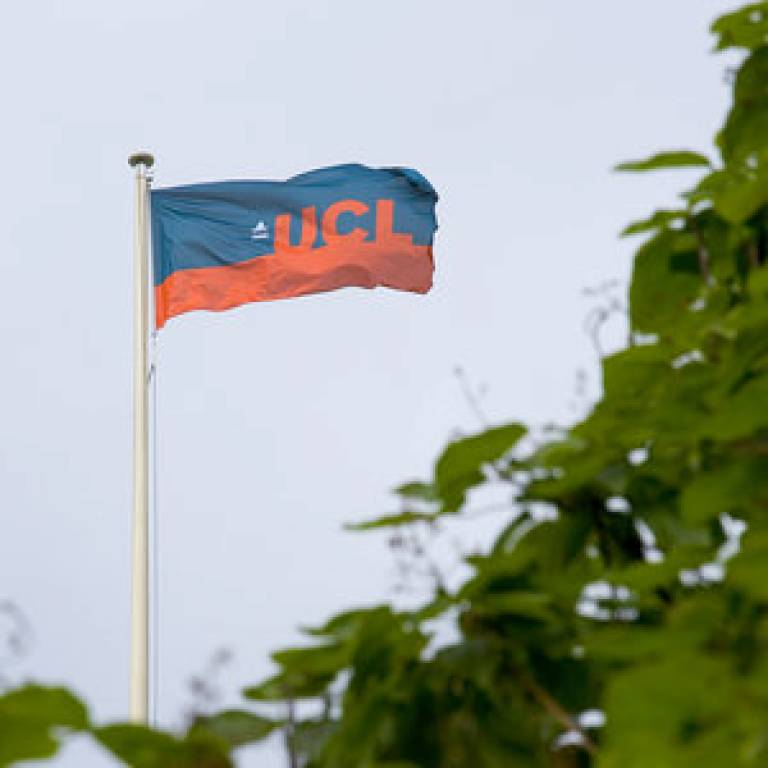 UCL flag