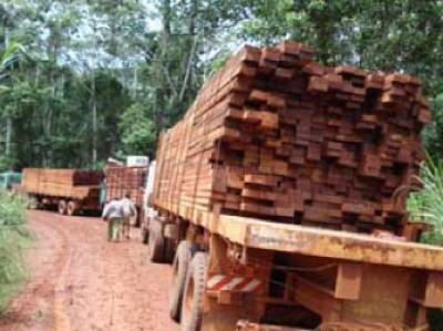 logging trucks