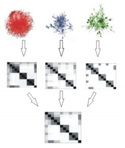 Fun-L shows how different source protein interaction networks on the left are  converted into individual kernel matrices middle and finally combined into a single integrated matrix.