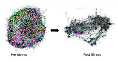 Figure of network undergoing rearrangements on Stress
