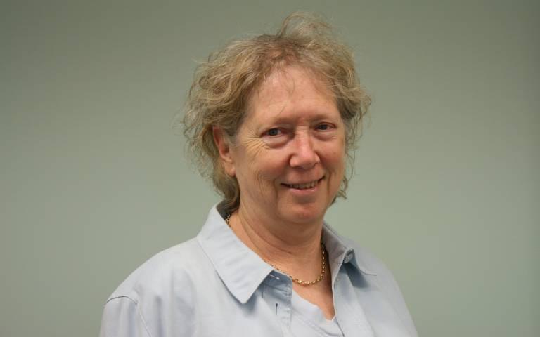 Professor Bencie Woll's Retirement