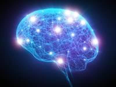 Brain activity 32711818