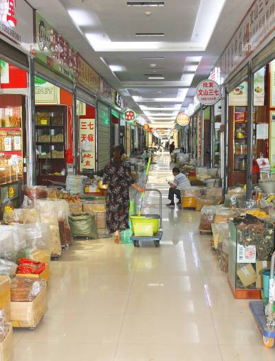 The spice market at Kunming. A customer is walking down a corridor which is lined with shops selling spices and medicinal products.