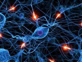 Active neurones 06935624