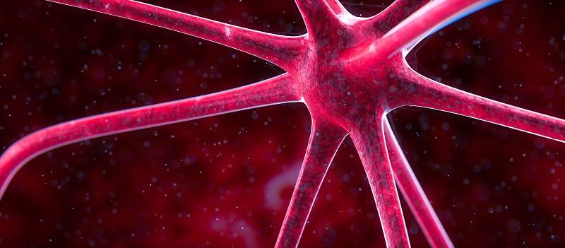 Graphic showing neurons in the brain