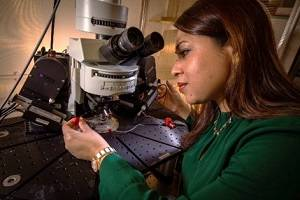 Professor Afia Ali working in her laboratory