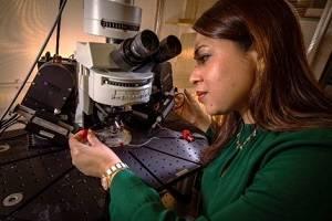 Professor Afia Ali working in her laboratory