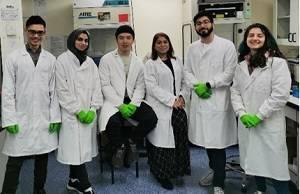 Researchers in Professor Afia Ali's laboratory