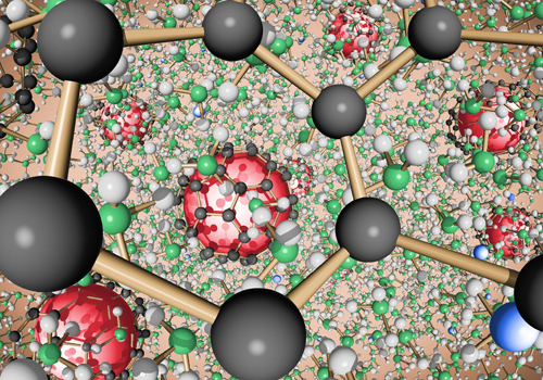 Carbon BuckyBalls in a Solution of Liquid Ammonia