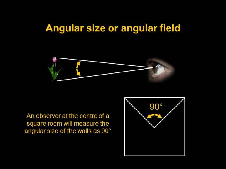 angular field