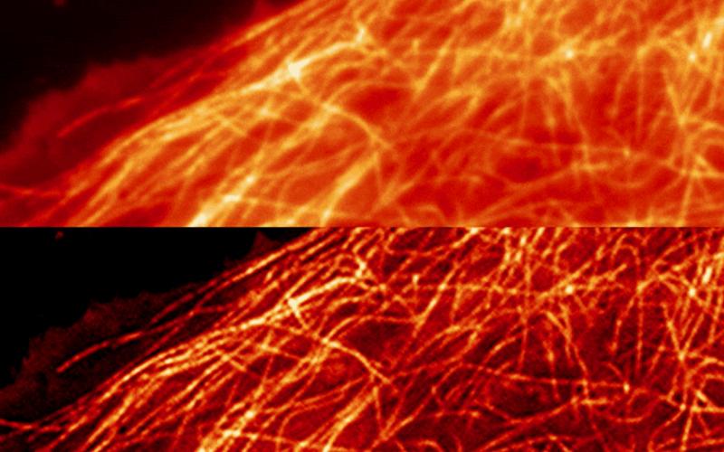 Experimental Optics