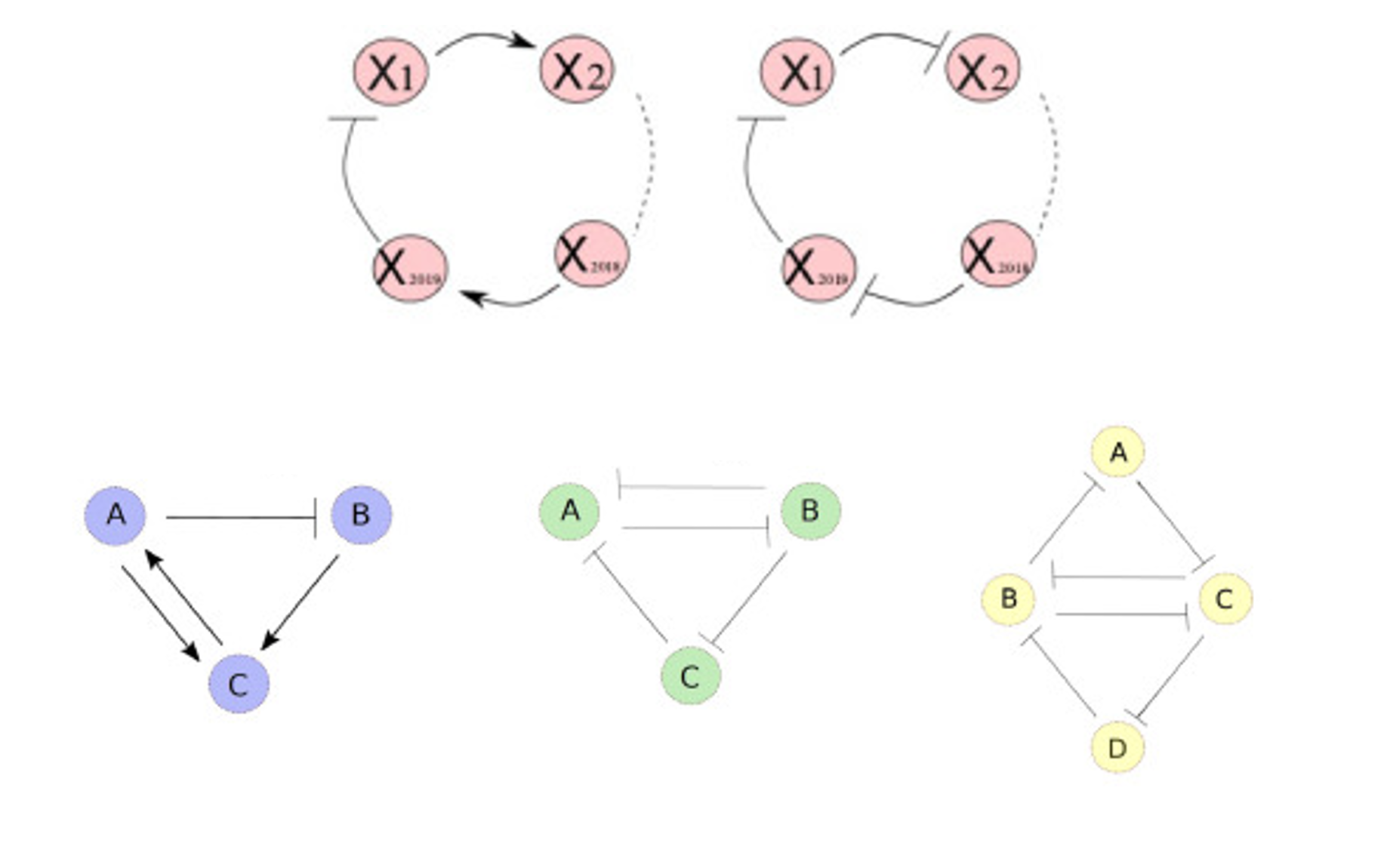 Physics of Interaction Networks