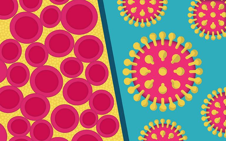 Drugs stop HIV transmission