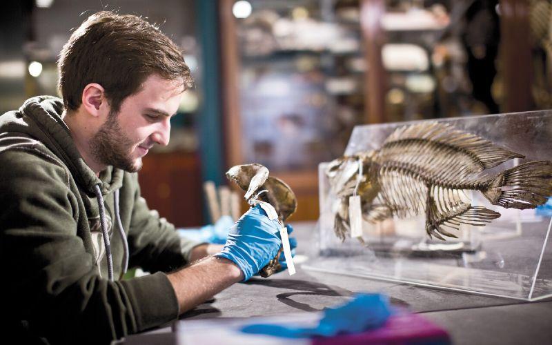 Student in grant museum