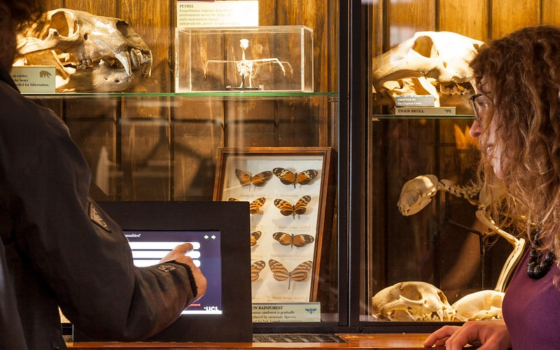 Students at UCL museum