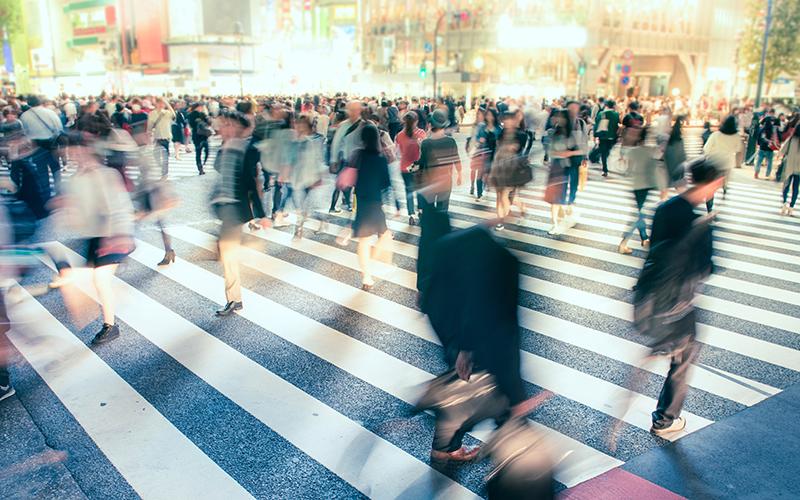 people crossing zebra