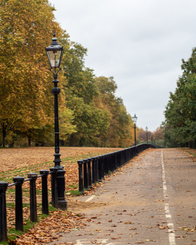 Horse track alongside path in Hyde Park.