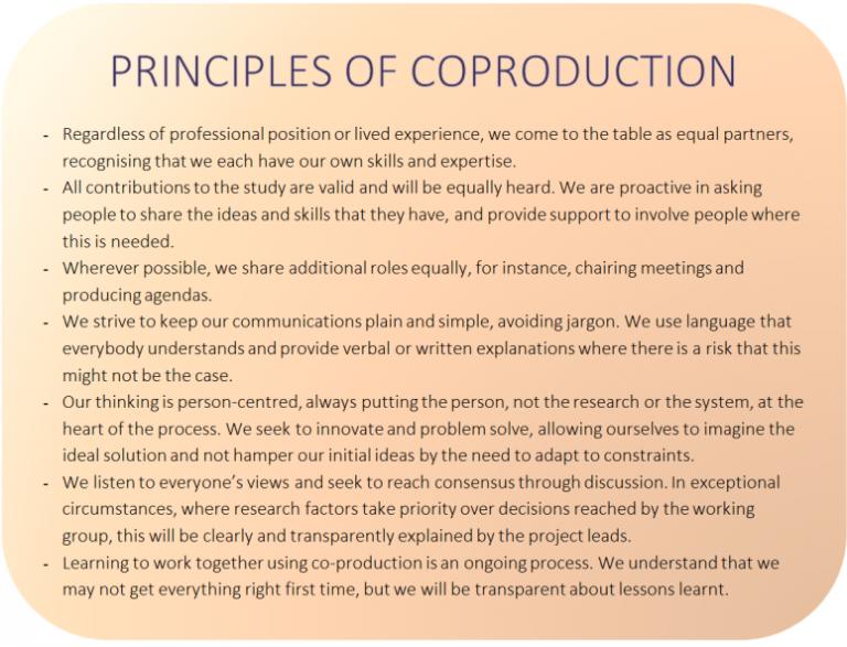 Coproduction principles