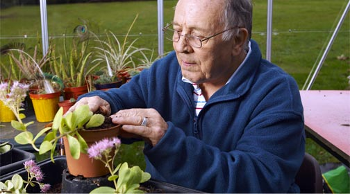 Older person watering plants