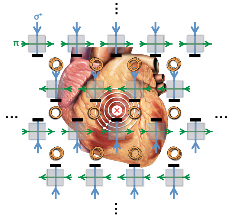An illustration of the quantum sensors overlaid on top of a human heart