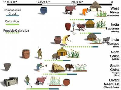 Pathways to Agriculture