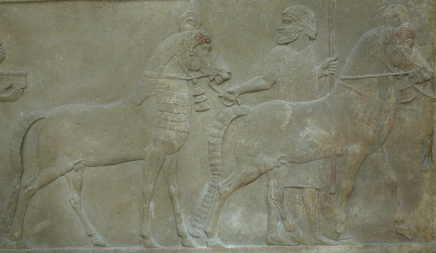 Assyrian Empire Builders The Medes Purveyors Of Fine Horses