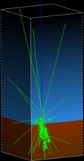 Model of cosmic rays in Martian subsurface