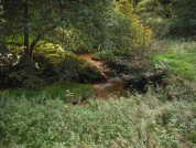 <p>Turning Landscape into Colour is an investigation into the origins of earth pigments -  'ochres' found in landscapes across the UK that considers their significance as contemporary cultural materials.</p>