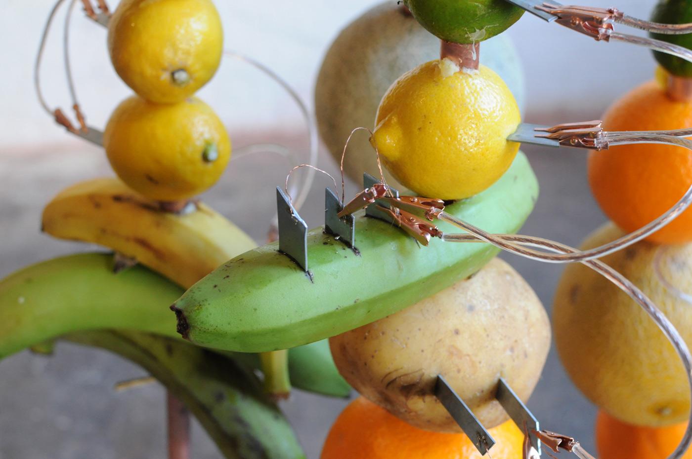 make lemon battery investigatory project