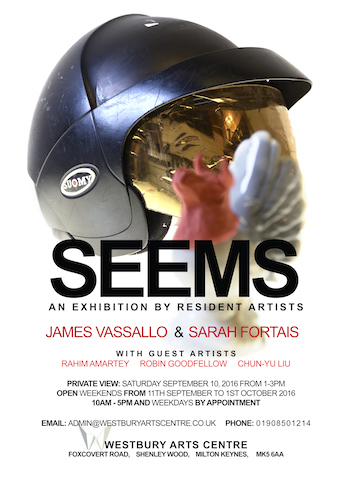 Seems: an exhibition by resident artists - Westbury Arts Centre