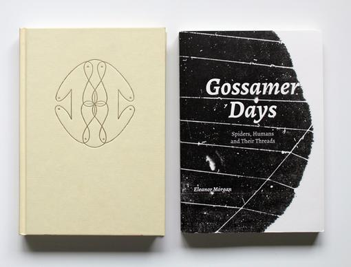 Gossamer Days - Eleanor Morgan