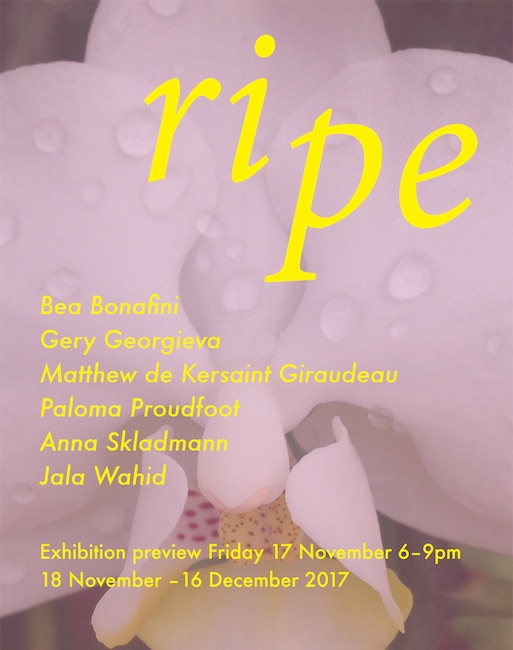 Ripe - Kingsgate Project Space