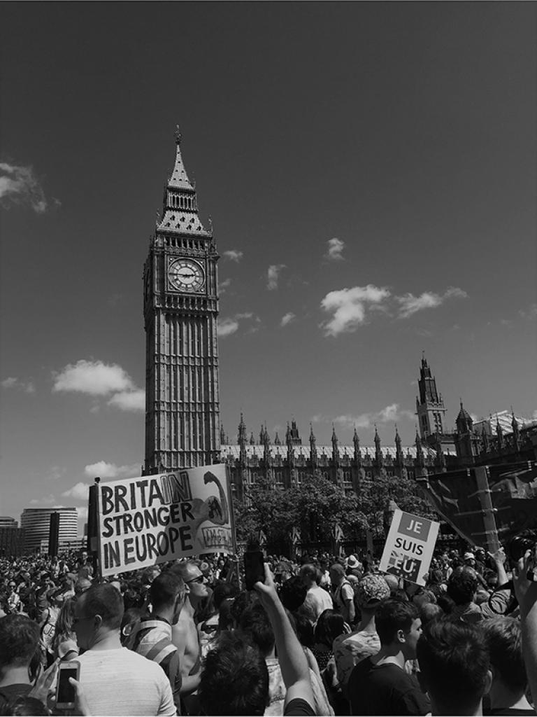 Brexit Protest Big Ben