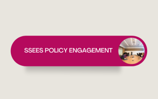 SSEES Policy engagement