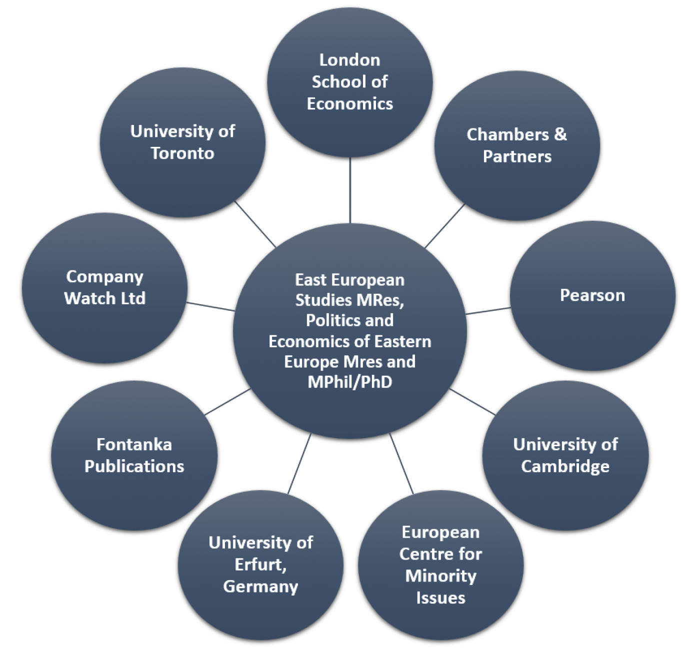 Research and PhD Career Destinations | UCL School of Slavonic and