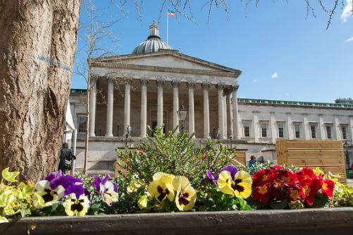 UCLFLOWERS