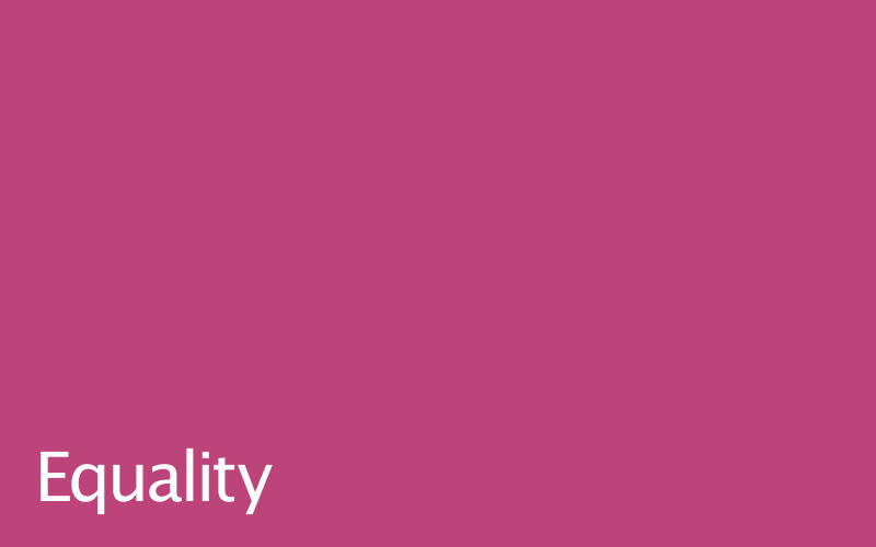 Link to equality policy