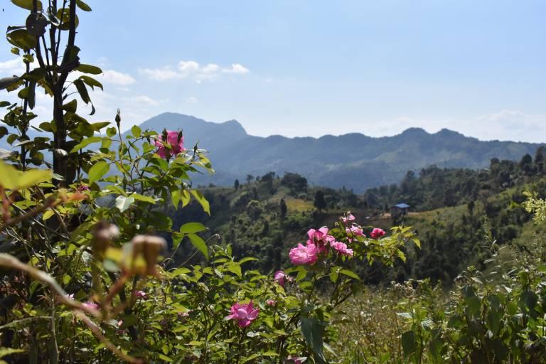 Mountains of Kalaw, Myanmar