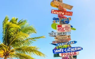A signpost next to a palm tree, pointing to several different world cities