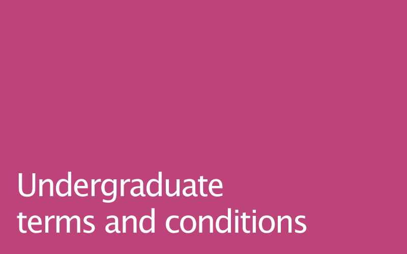 Link to undergraduate terms and conditions